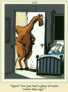 The far side hy Gary Larson Far Side Cartoons, Far Side Comics, Cartoon Jokes, Funny Cartoons, Cartoon Cats, Gary Larson Far Side, Gary Larson Cartoons, Calvin And Hobbes Comics, Jokes Pics