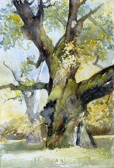 watercolor tree - by Jola - modliszqa on deviantart Watercolor Trees, Watercolor Landscape, Watercolor And Ink, Watercolour Painting, Landscape Art, Landscape Paintings, Watercolors, Landscapes, Simple Watercolor