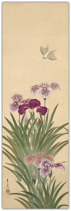 Irises and Moth.  Suzuki Kiitsu  (1796–1858)  Edo period.  Hanging scroll; ink, color, and gold on silk.  101.6 x 33 cm (40 x 13 in.)  The Metropolitan Museum of Art