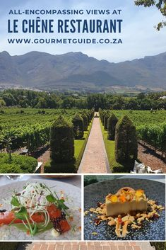 Chef Darren Badenhorst's inimitable flair with flavours and presentation is evident in every dish at Le chêne restaurant on the Leeu Estate in Franschhoek. Restaurant, Fine Dining, Presentation, Dishes, Hot, Gourmet, Kitchens, Twist Restaurant, Plate