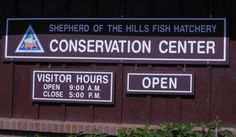 Shepherd of the Hills Fish Hatchery - Branson, MO  - A Great FREE place to have some family fun in Branson.  Branson, Missouri, Shepherd of the Hills Fish Hatchery, things to do, FREE, travel, vacation www.recipesforourdailybread.com