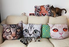 A large set of cat-face pillows for any feline-friendly apartment. - A large set of cat-face pillows for any feline-friendly apartment. Silly Cats, Cats And Kittens, Crazy Cat Lady, Crazy Cats, Cat Pillow, Pillow Pets, Cushion Pillow, Cat Cushion, Pillow Fight