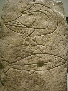 petroglyph scotland - photo by J. Spengler  Goose clan and salmon clan petroglyph, rock