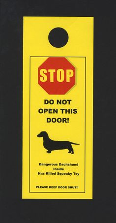 STOP DO NOT OPEN THIS DOOR! Dangerous Dachshund Inside Has Killed Squeaky Toy - Please Keep Door Shut!
