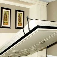 15 Best Wall Mounted Folding Beds