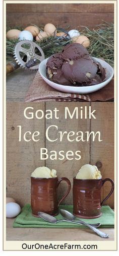 Because goat milk is naturally homogenized, making rich, smooth ice cream from goat milk is a bit of a challenge, unless you have a cream separator. But there are a few tricks of the trade. Here are recipes for sumptuously smooth and creamy vanilla and chocolate goat milk ice cream bases, without cow milk/cream. No need for cream separator. Add in nuts, chocolate chips, etc. to create your own flavors. The chocolate in the photo has walnuts.