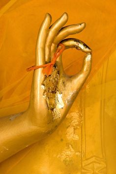 mudra in Thailand.... searching for peace and enlightenment #pisces