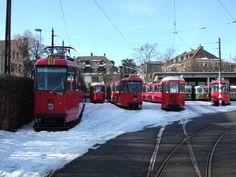Trams de Berne (Suisse) | Photo: Trams aux fils. (Interdicti… | Flickr Electric Train, Public Transport, Transportation, Photos, Fancy, Vehicles, Romania, Lisbon, Switzerland