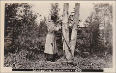 RP: Indian Woman stripping Birch Bark , HAY RIVER , NWT , Canada , 10-20s Item# SCVIEW358409 (253528647)