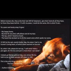 A dog's last will and testament.  LOVE this!