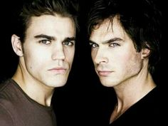 Stefan and Damon ... What every girl looks for ... !