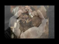 effective magic ring black magic spells in soweto london manchester Northern territory, Queensland Black Magic Spells, London Manchester, Lost Love Spells, Love Spell Caster, Magic Ring, Bosnia, Black Rings, Honduras, Voodoo