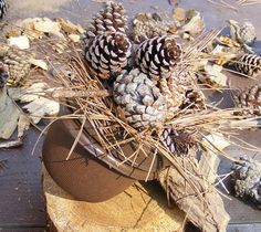 Pine Cone And Straw Small Geocaching Container Geocache Cache Evil GPS