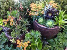 Gardens   Indiana Flower U0026 Patio Show