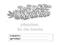 123 Lesidee - gr3/4 W lente bloem