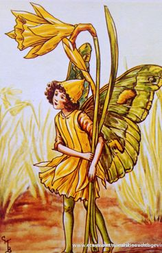1930s DAFFODIL FAIRY Cicely Mary Barker by sandshoevintageprint