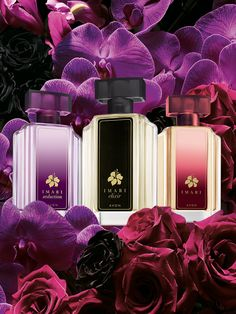 Imari is celebrating 30 years with a new look and a new scent, Imari Elixir. Shop now: https://www.shopwithsandy.avonrepresentative.com