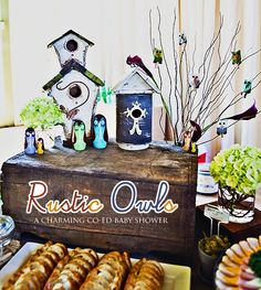 Beautiful Rustic Owl Themed baby shower. Possibly ideas for Turtle's 1st Birthday.