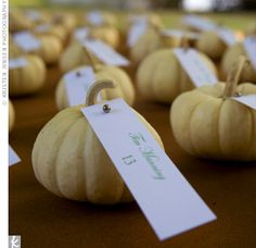 Pumpkin Theme Wedding Ideas, Cinderella comes to mind good idea for k's wedding!  Do you have a pumpkin patch somewhere near the house?  I could make jilene go with me if you're working?  They Also have a picture of the guest cards tied to apples (on the stem). That was really cute too!