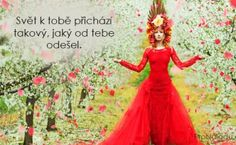 639-svet-prichazi Disney Characters, Fictional Characters, Aurora Sleeping Beauty, Disney Princess, Quotes, Quotations, Fantasy Characters, Disney Princesses, Quote