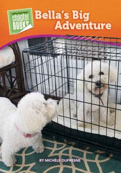 New! Bella and Rosie Advanced Chapter Book-Pioneer Valley Books - Bella's Big Adventure  www.pioneervalleybooks.com