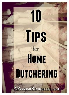 As a homesteader, there is nothing more satisfying than raising your own food. Are you ready to take the next step and do your butchering and processing at home, too? Here are ten tips I've learned about the process of butchering our home raised meat! Meat Butcher, Butcher Shop, Home Canning, Living Off The Land, Raising Chickens, Raising Cattle, Raising Farm Animals, Hobby Farms, Preserving Food