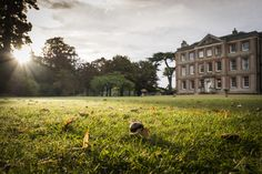 North Lawn at Ardington House, Oxfordshire Lawn, Wedding Venues, Island, Mansions, House Styles, Beautiful, Home, Wedding Reception Venues, Wedding Places