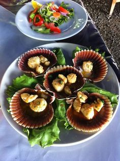 seafood restaurant in puerto jimenez sea scallops more seafood ...