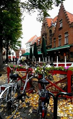 Fallen leaves & bicycles in Bruges, Belgium Bruges, Places To Travel, Places To See, Paris Rooftops, Autumn Leaves, Fallen Leaves, Historical Sites, Beautiful Places, Amazing Places