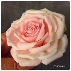 3 tone pink rose cake by lisa templeton