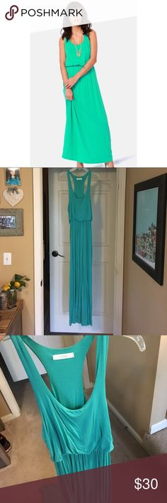 Lush Green Thumb Maxi Dress Never worn! This gorgeous maxi dress from Francesca's is perfect for Spring! Elastic waist, green/mint color, super soft to touch. 95% Rayon, 5% spandex. NWOT Lush Dresses Maxi