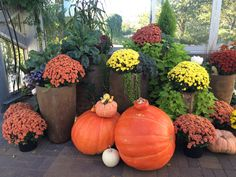 Fall at Meijer Gardens