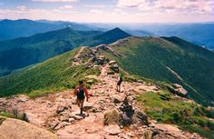 Best Hiking Trails in NH (and several other states as well)  Pet friendly parks in NH  http://www.nhstateparks.org/explore/visiting/traveling-with-pets.aspx