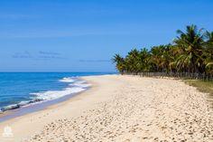 #praiadoriodabarra #terravistarestaurante #terravista #terravistabrasil #trancoso #brasil #brazil #bahia #mtur #riodabarra #natureza #naturelovers #beachlovers