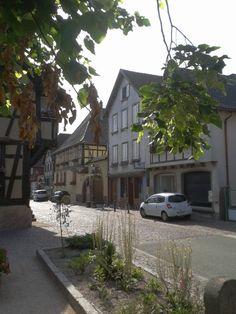 Quelques photos prises à proximité du bureau d'accueil du Vignoble - Scherwiller