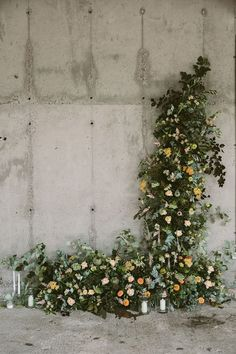Swallows& Damsons floral installation Design Sponge