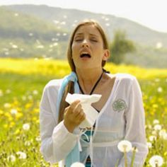 11 natural allergy remedies
