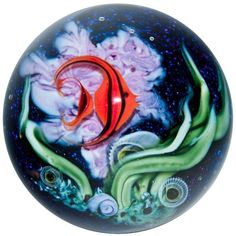 "2 1/4"" Glass Marble ~ David Salazar ~ Orange Angelfish in Coral Reef"