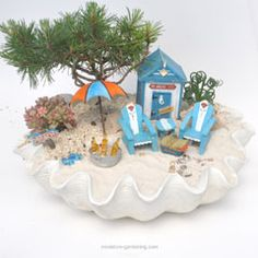 Did You Know Mermaids are Fairies Too? - Miniature Gardening
