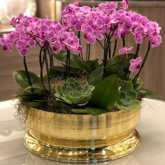 Best 11 So lovely arrangement – SkillOfKing. Orchid Flower Arrangements, Orchid Planters, Orchid Centerpieces, Beautiful Flower Arrangements, Beautiful Flowers, Artificial Orchids, Phalaenopsis Orchid, Orchid Care, Flowers Nature