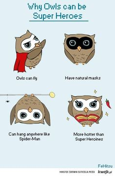 why owles can be Super Heroes