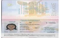 BNP2TKI -- Program G to G Korea Selatan