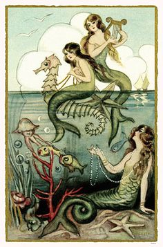 """In I403 another mermaid was stranded on mud flats in the Netherlands. According to a 17th century historian, she was befriended by village women who """"cleansed her of the seamosse, which did stick about her."""" She never learned to speak but lived for 15 years and was given a Christian burial in the local churchyard."""