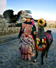 Swoon! Love this shot. Check out my fancy spirit animal :) Peru