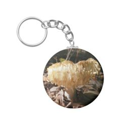 >>>Hello          	Mushroom 23 ~ keychain           	Mushroom 23 ~ keychain We provide you all shopping site and all informations in our go to store link. You will see low prices onHow to          	Mushroom 23 ~ keychain please follow the link to see fully reviews...Cleck link More >>> http://www.zazzle.com/mushroom_23_keychain-146743130172834466?rf=238627982471231924&zbar=1&tc=terrest