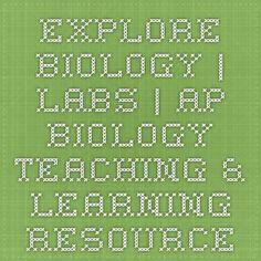 Lots of activities for Yr12 Bio- e.g, macromolecule cut & paste activity