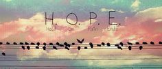 Facebook Timeline Wall Cover Banner Birds Wire HOPE acronym Hold on Pain Ends custom