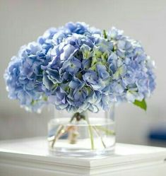 perhaps as a bouquet and for the centerpieces. Simple hydrangea centerpiece adding seashells would be nicer. Blue Hydrangea Centerpieces, Hydrangea Arrangements, Hortensia Hydrangea, Hydrangea Bouquet, Faux Flowers, Fresh Flowers, Beautiful Flowers, Blue Wedding Flowers, Floral Design