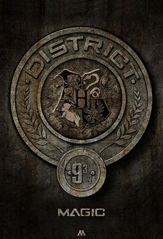 the hunger games meets harry potter. Katniss wouldnt have lasted through the books if this district existed!