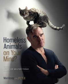 Morrissey asks you to help eradicate the animal overpopulation crisis by spaying and neutering your companion animals. #pets #peta #celebs #adoptdontbuy